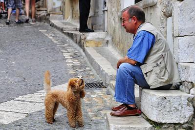 Man & dog_D3S3570