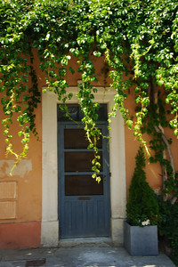 Saint_Saturnin_les_Apt_Grape_vine_Door_LAN1547