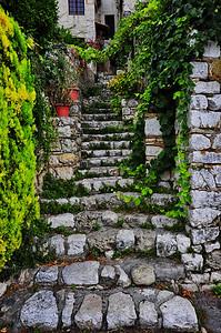 Steps_Up_D3S3597