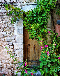 Sault_Vine-covered_doorway_LAN1746_11X14