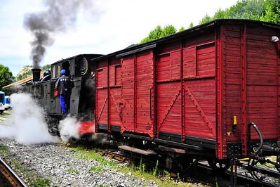 Train_des_Pignes_Moving-Boxcar_BIF4204