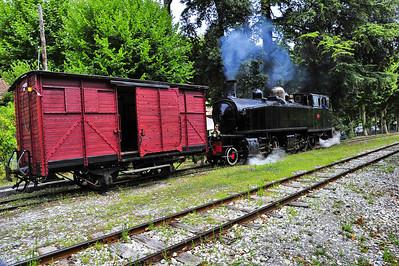 Train_des_Pignes_Locomotive_pushing_Boxcar_BIF4254