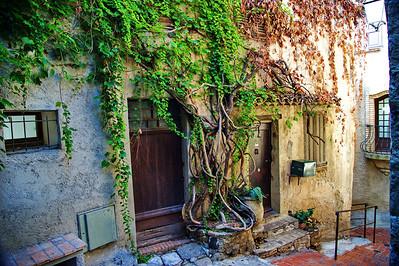 Cagnes_Medieval_Village_Vine-door_LAN3350