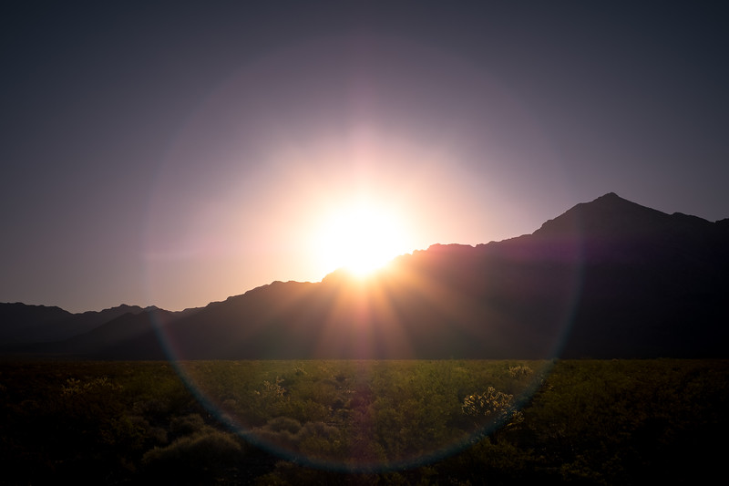 Mojave Magic