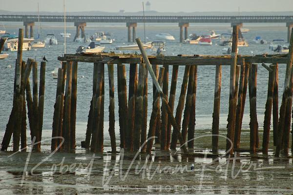 Old pier, new pier