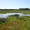 Actividades en la laguna (14/04/18)