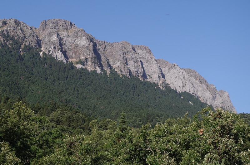 torreon sierra del pinar