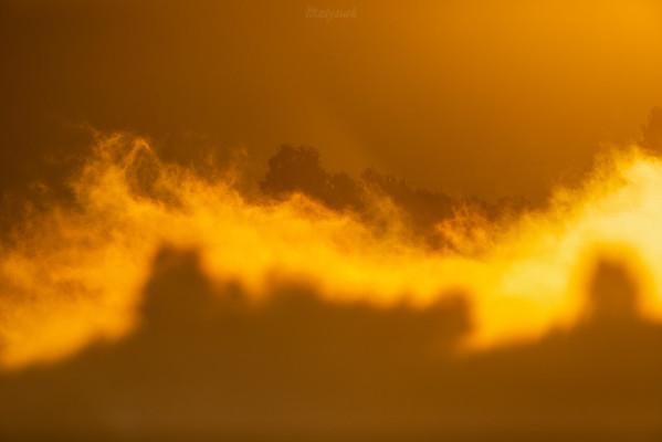 Taniec płomieni mgielnych