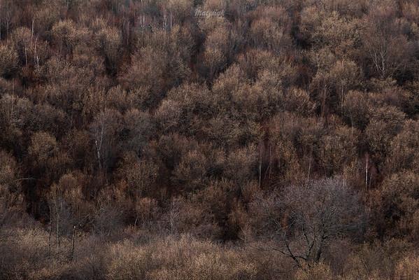 Listopad w Bieszczadach ©Mateusz Matysiak