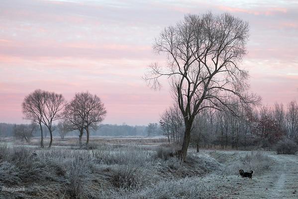 Na spacerze o brzasku Dolina Pisi Gągoliny, Ziemia Chełmońskiego ©Agata Katafiasz-Matysiak