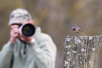 Fotografując podróżniczka