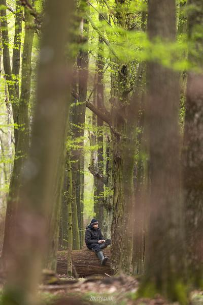 Teu w skulskim lesie