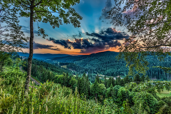 Black Forest - HDR