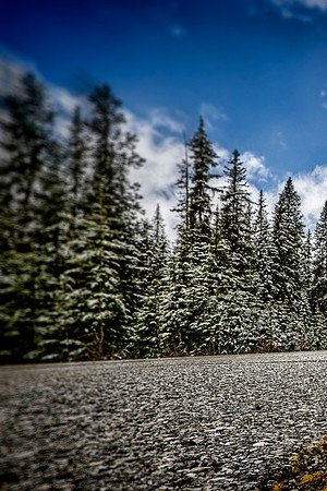 Roadview Icefield Parkway - Split Shots
