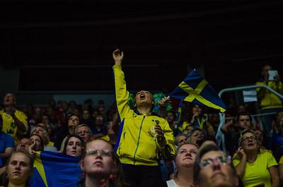 Fans of Sweden