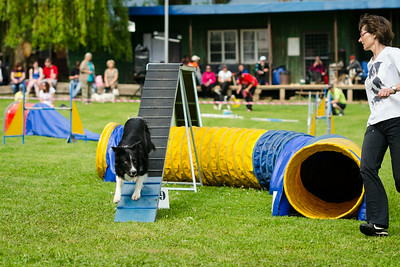 Agility Tournament in Jičín