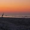2013 Gulf Shores AL 20130508 134432