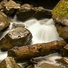 2009 Great Smokey Mountains National Park  20090729 142925