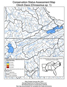 Conservation Status Assessment Map for Clinch Dace (Chrosomus sp. 1)