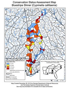 Conservation Status Assessment Map for Bluestripe Shiner (Cyprinella callitaenia)