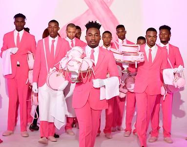 Models Inc Pink Ribbon Fashion Show
