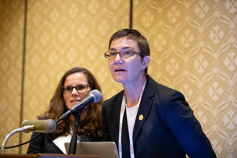 Beth Shubin Stein, MD, speaks during RJOS Annual Meeting