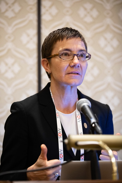 Beth Shubin Stein, MD, speaks during RJOS Annual Meeting