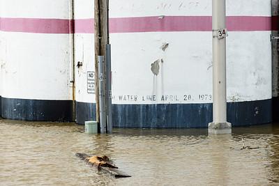 2013 06 04 53 Alton Riverfront Flood