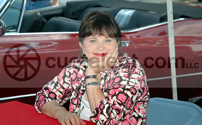 2007 SYCAMORE / CINDY WILLIAMS