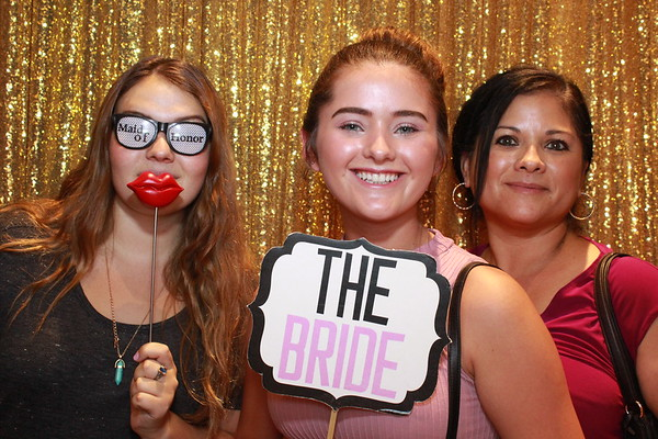 Phoenix Bridal Show - June 2017 (open)