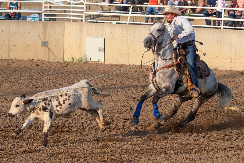 Spencer King ropes a calf during the tie down roping event on August 5, 2020, at the  Golden Spike Arena in Ogden