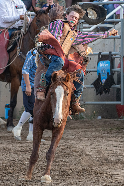 Wyatt Petersen tries to hold on during the bareback riding portion of the rodeo. At the Golden Spike Arena in Ogden, on August 5, 2020.
