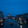 Blue Venice     .Entered