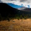 June Lake Meadow