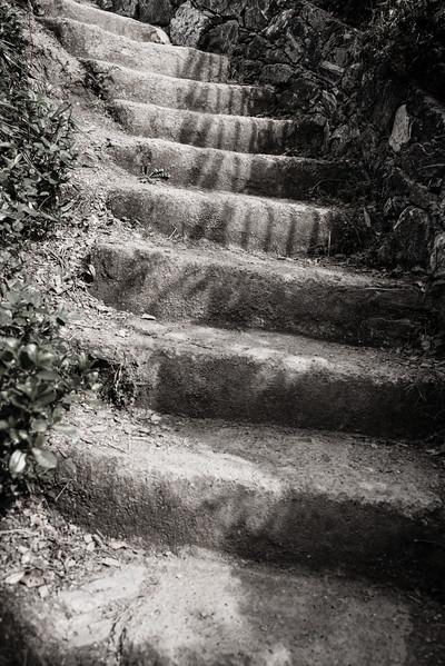 Steps Along the Way, Cinque Terra