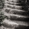 Steps Along the Way, Cinque Terra