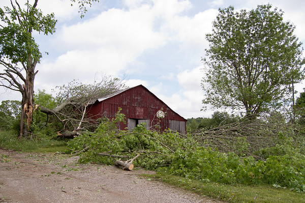 A barn on highway 90 (Burkesville Road)  barely escapes damage from multiple fallen trees.
