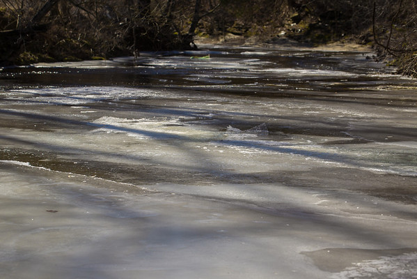 It doesn't look it, but you could stand on the creek to photograph the solidity. Further down, the water had begun to win the frozen battle.