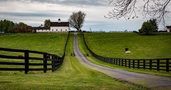 Kentucky - Round #2