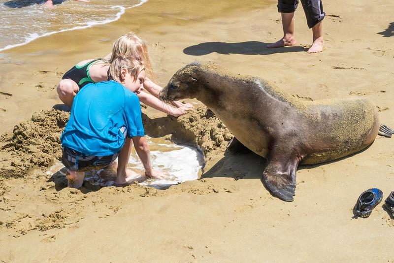 Galapagos-kids&sea_lion