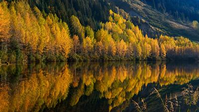Fall on Turnagain Arm, Alaska