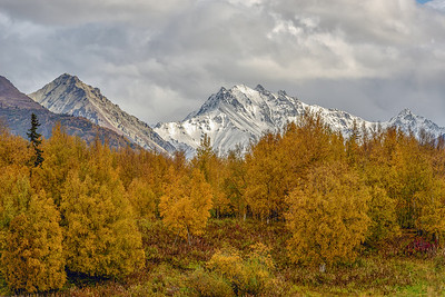 Fall in Alaska Near Palmer