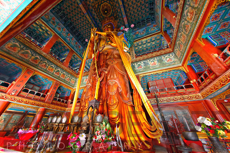 Giant Buddha Statue in the YongHeGong Lama Temple, Beijing, China