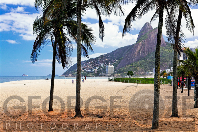 Ipanema Beach Viewed Through Palm Trees, Rio De Janeiro, Brazil