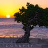 Eagle Beach Sunset in Aruba