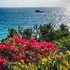 Scenic Caribbean Coastal Vista, St Thomas, USVI