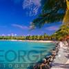 Lagoon with Palm Trees, Renaissance Island, Aruba