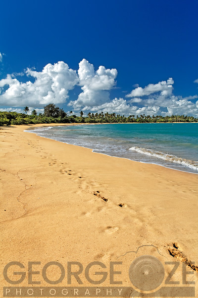 Footprints in the Sand on a Caribbean Beach, Loisa, Puerto Rico