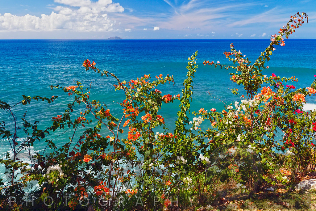 Scenic Coastal View with the Desecheo Island, Point Higuera, Puerto Rico