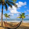 Hammock on a Palm Covered Beach, Isla Verde, Puerto Rico